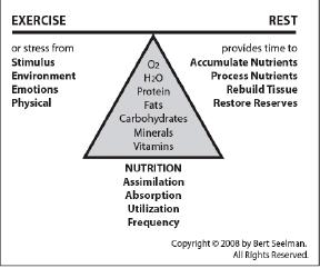 true health through balance
